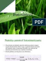 fotosinteza-090626121259-phpapp01