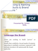 Brand - Introducing, Naming and Brand Extensions Ppt