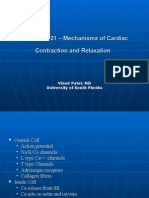 CHAPTER 21 – Mechanisms of Cardiac Contraction And
