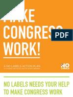 Make Congress Work Action Plan