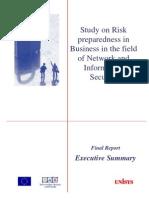 Infso Risk Execsum