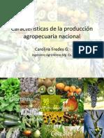 Caracteristicas de La Produccion Agropecuaria Nacional