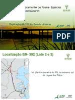 PROGRAMA DE MONOTORAMENTO DE FAUNA BR-116/392