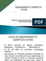 Expo Sic Ion Plan de Mejoramiento Gentico Ovinos