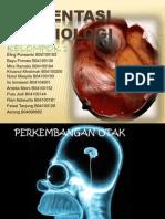 Ppt Kel. 1 an Otak, Medula Spinalis Dan Mata