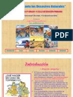 desastresnaturales-101219191512-phpapp02