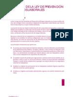 Resumen de La LPRL y Drogodependencias