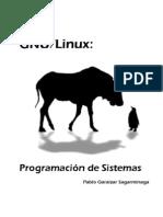 Programacion de Sistemas GNU/Linux
