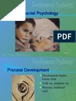 Developmental Psychology Power Point
