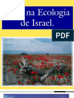 Jesus Na Ecologia de Israel