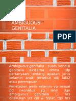 Ambiguous Genitalia