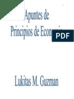 Principios de Economia - Lucas Guzman