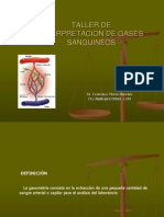 Taller Gases 2010