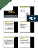Plantas Medicinais - Urologia E Ginecologia - Milleno D. Mota - Fitoterapia - UNIME