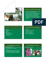 Plantas E O Sistema Cardiovascular - Milleno D. Mota - Fitoterapia - UNIME