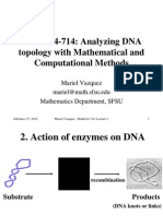Mariel Vazquez- Analyzing DNA topology with Mathematical and Computational Methods