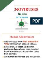 ADENOVIRUS DISEASES