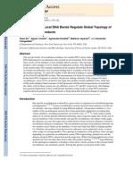 Quan Du, Alexei Livshits, Agnieszka Kwiatek, Makkuni Jayaram and Alexander Vologodskii- Protein-induced Local DNA Bends Regulate Global Topology of Recombination Products