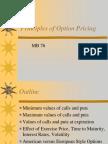Principles of Option Pricing