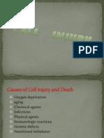 SEMENAR Causes of Cell Injury2