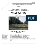 Walnut Growing Plan