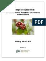 A Research Review of Crataegus ha