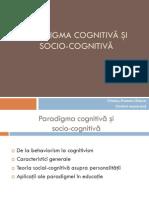 Paradigma cognitiva