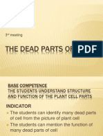03-The Dead Parts of Cell