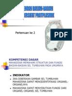 02-SEL BERSIFAT PROTOPLASMIK