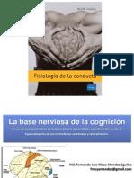 01_Base_Nerviosa_de_la_cognición