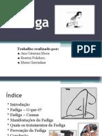 Fadiga - Power Point (2)