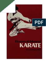Elements of Advanced Karate - Lester Ingber 1985