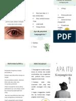 Konjungtivitis Leaflet Fahrizal.S