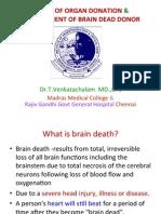 Basics of Organ Donation & Management of Brain Dead Donor