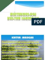 Presentation1_KULTUR JARINGAN_