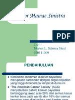 POWER POINT Kanker Payudara marten