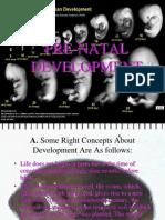 Pre Natal Development