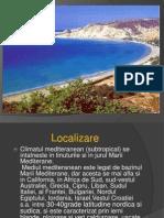 mediul mediteranean