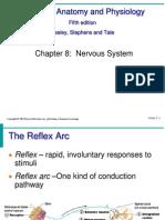 Reflexes, Brain VERY GOOD