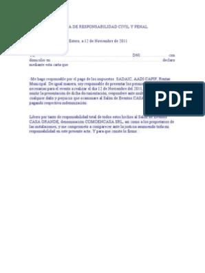 Carta De Responsabilidad Civil Y Penal