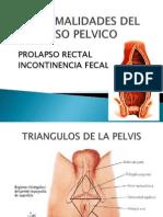 12 A Normal Ida Des DEL PISO PELVICO- Prolapso Rectal e cia Fecal- Zoraida L.