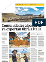 Fibra de Alpaca Perú se exporta a Italia. Éxito de comunidades andinas emprendedoras