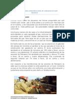 Congreso Aprueba Construccion de Gasoducto Sur Andino