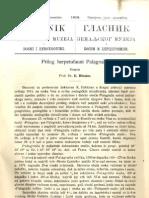 Glasnik Zemaljskog Muzeja 1913./god.25 knj.3
