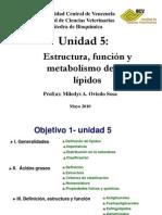 Lipidos 1