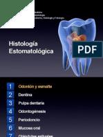 Histología Oral - Esmalte y LAD