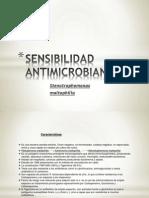 Articulo- Seminario Sensibilidad a