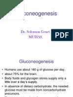 Gluconeogenesis