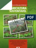 13-AgriculturaSustentavel