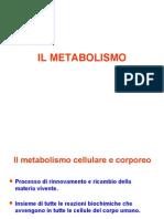 Lezioni Fisiologia (Il Metabolismo